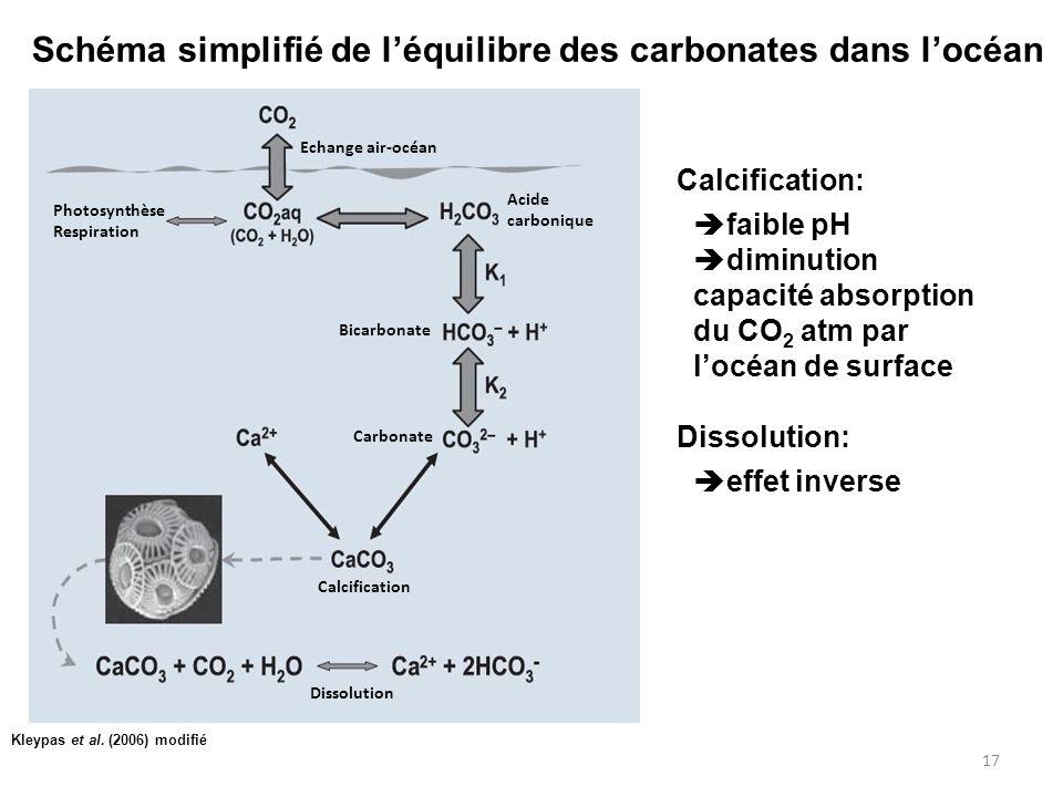 Schéma simplifié de l'équilibre des carbonates dans l'océan