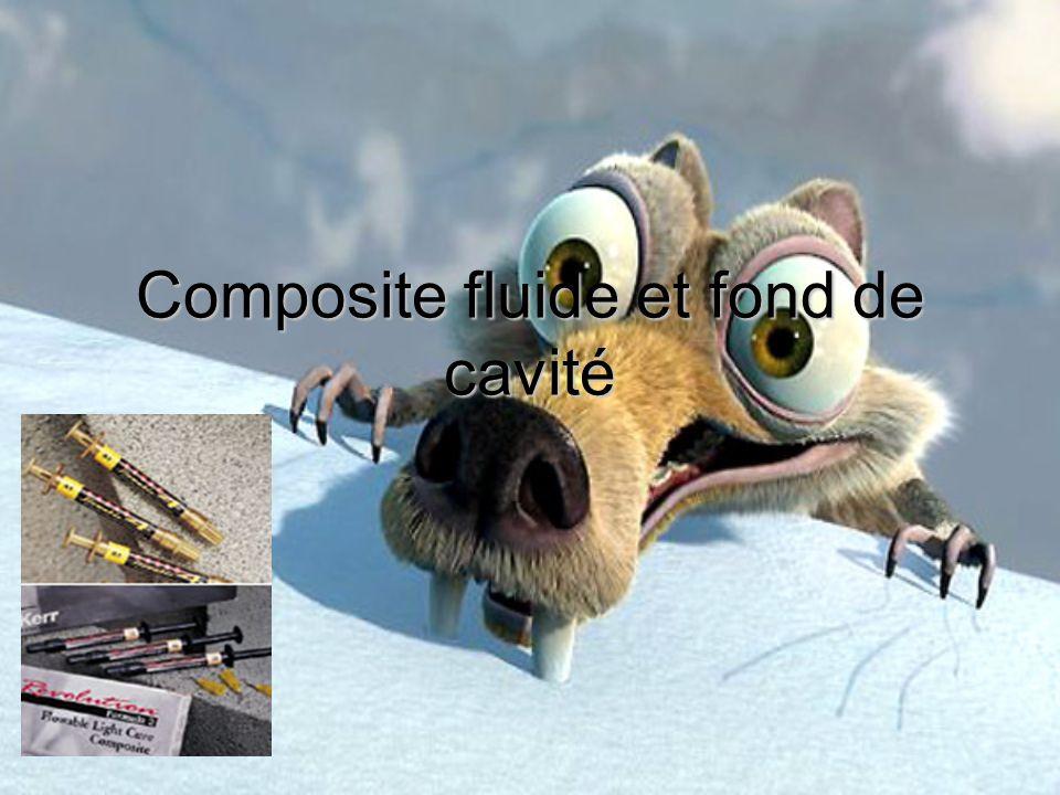 Composite fluide et fond de cavité