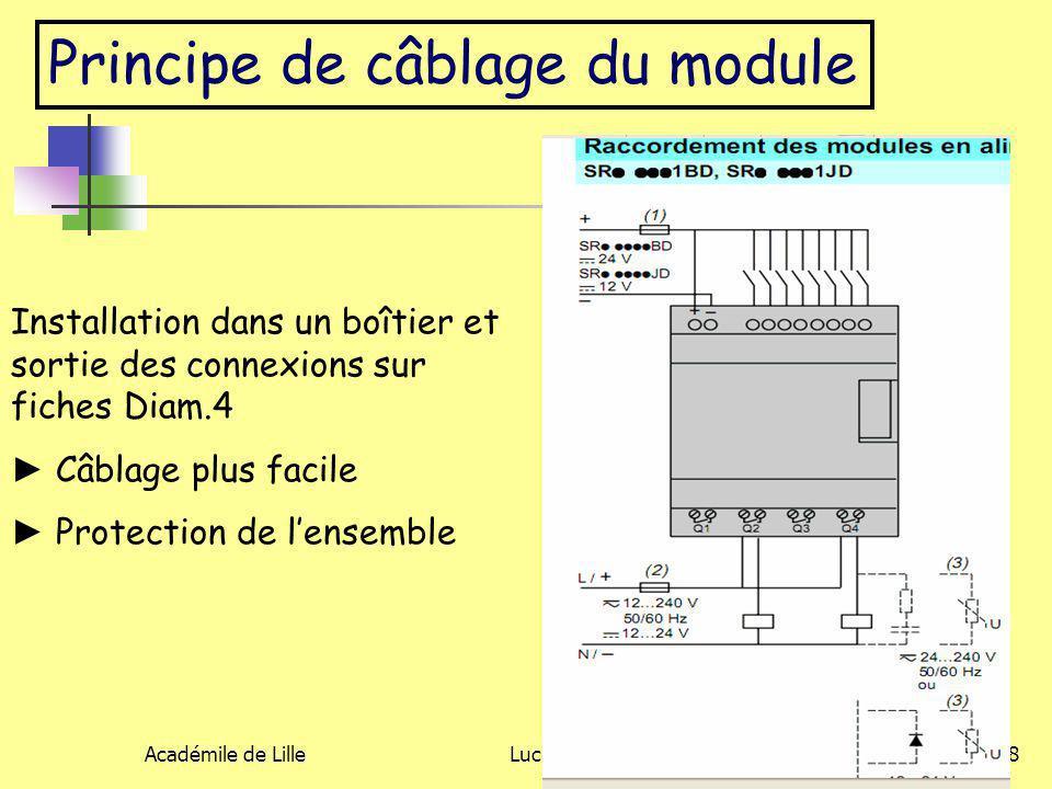 Principe de câblage du module
