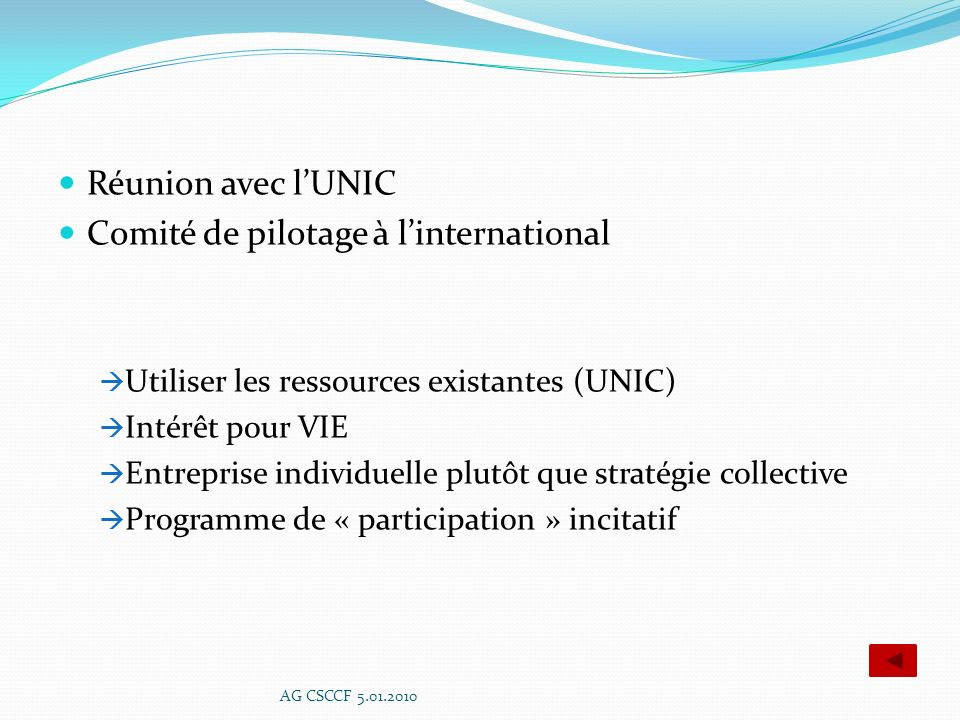 Comité de pilotage à l'international