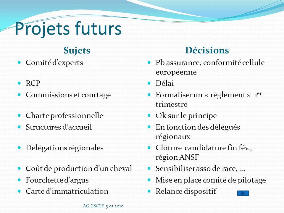 Projets futurs Sujets Décisions
