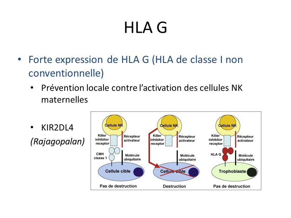HLA G Forte expression de HLA G (HLA de classe I non conventionnelle)