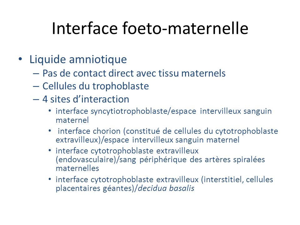 Interface foeto-maternelle