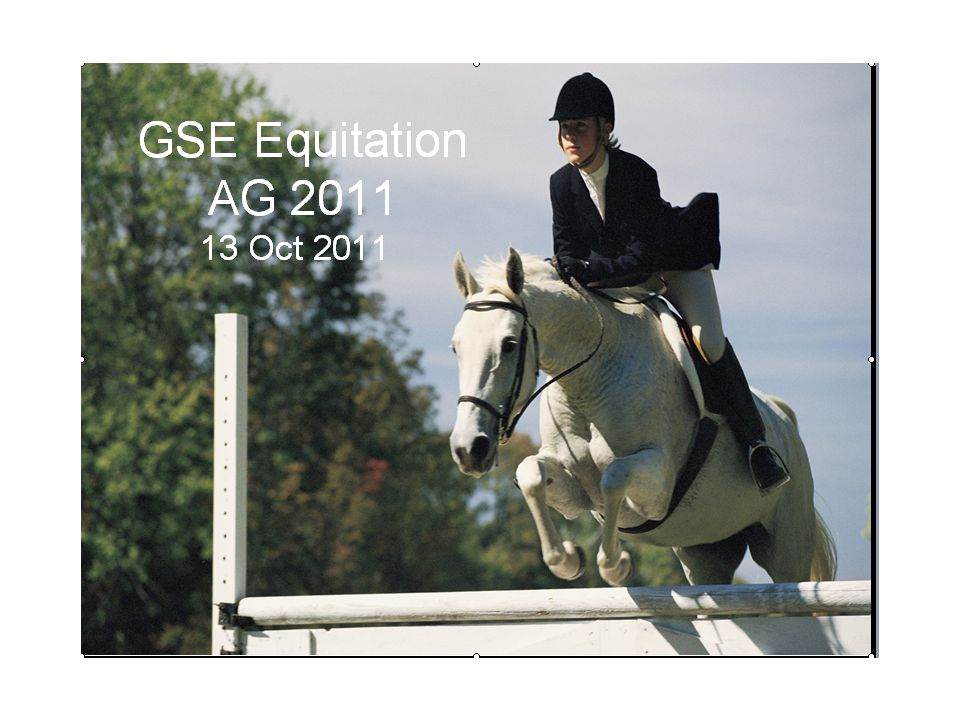 GSE Equitation AG 2011 13 Oct 2011
