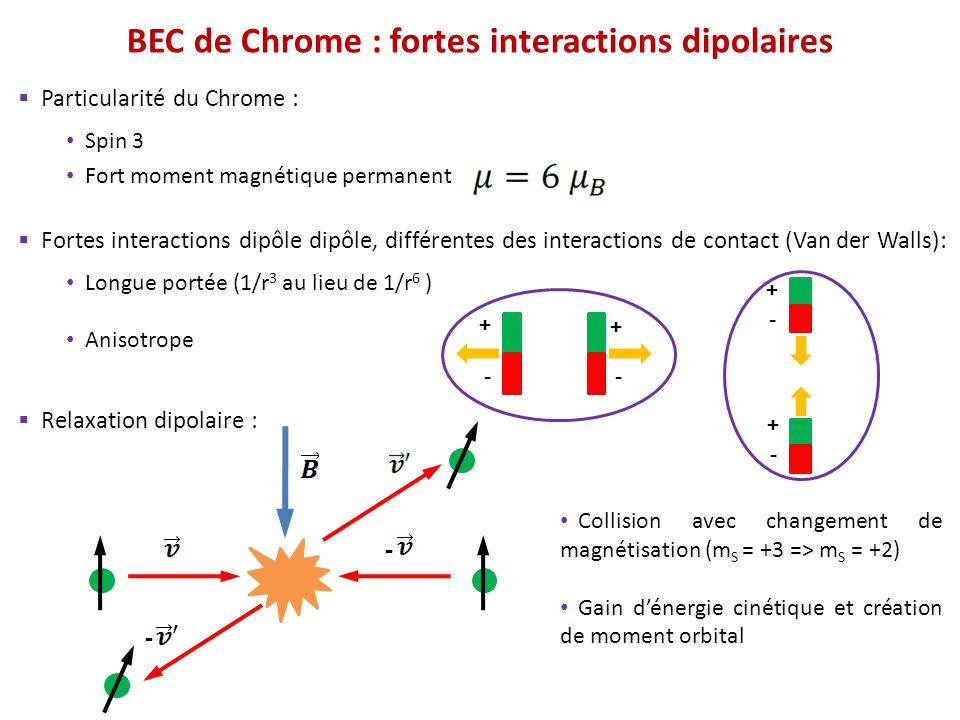 BEC de Chrome : fortes interactions dipolaires