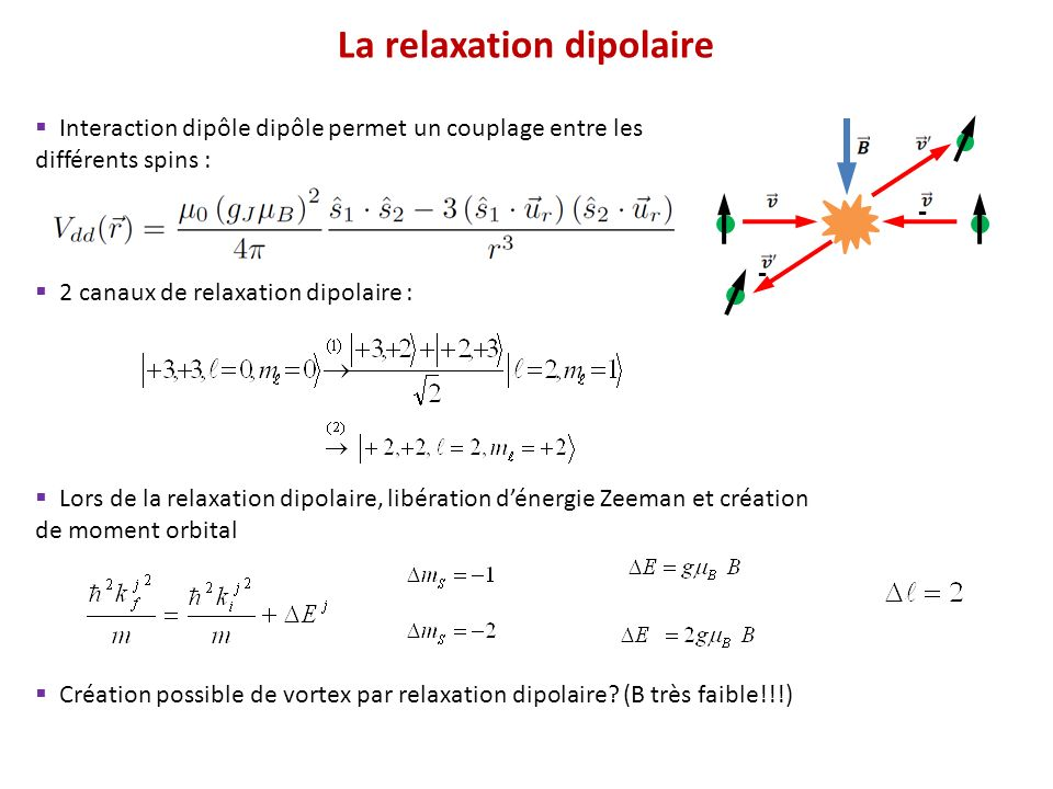 La relaxation dipolaire