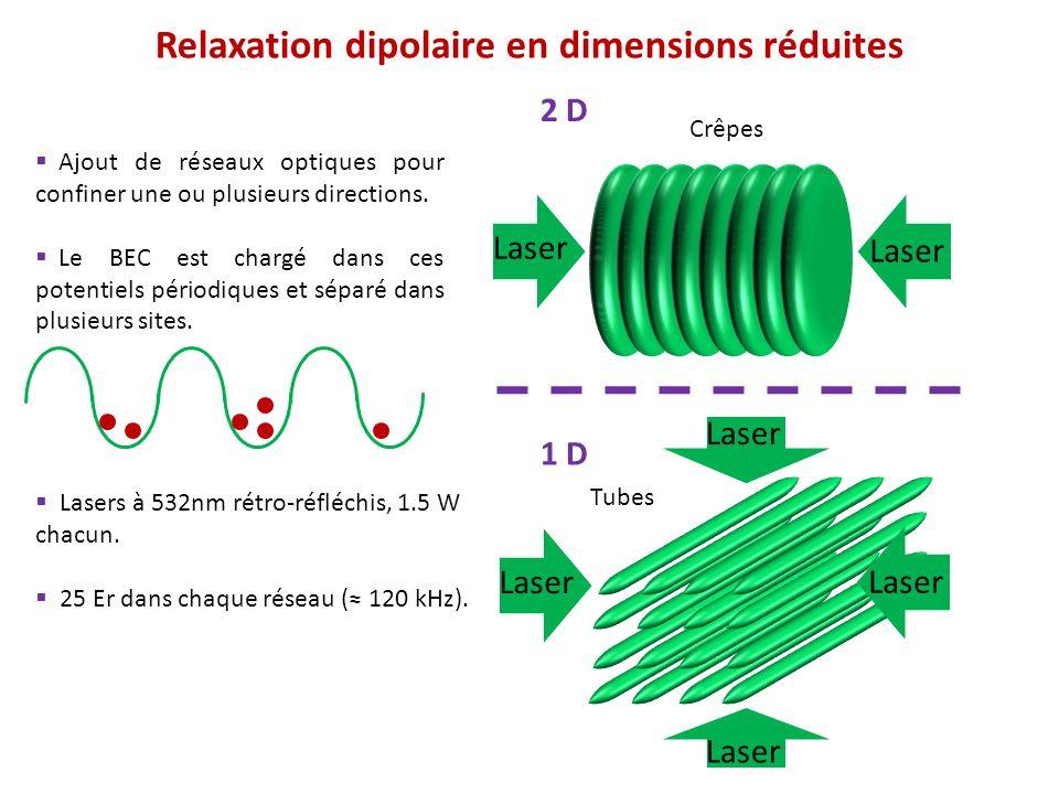 Relaxation dipolaire en dimensions réduites