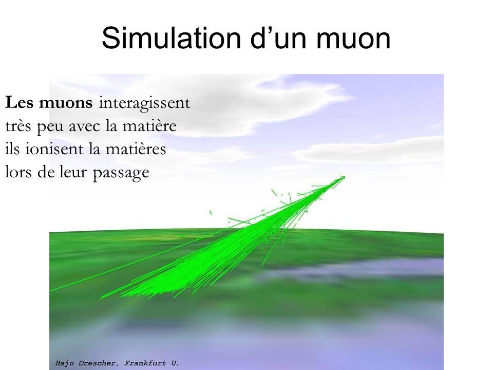 Simulation d'un muon Les muons interagissent très peu avec la matière ils ionisent la matières lors de leur passage.