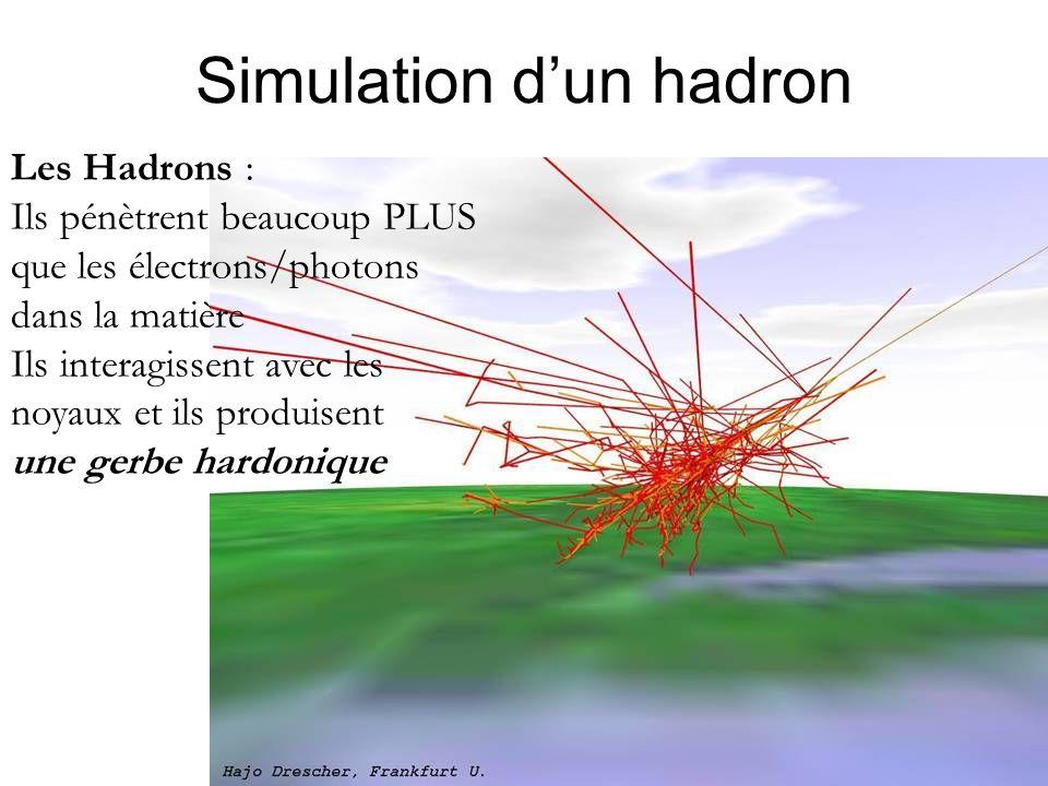 Simulation d'un hadron