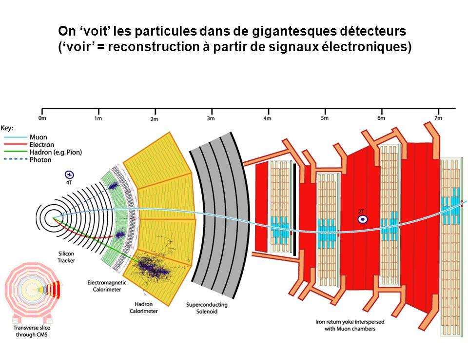 On 'voit' les particules dans de gigantesques détecteurs