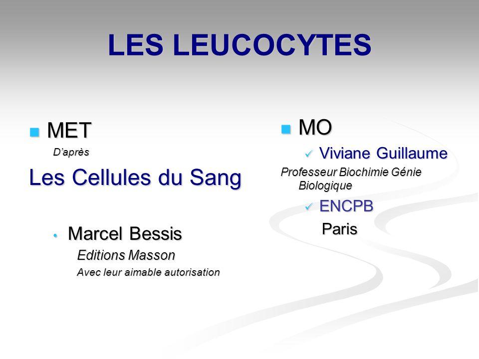 LES LEUCOCYTES Les Cellules du Sang MO MET Marcel Bessis