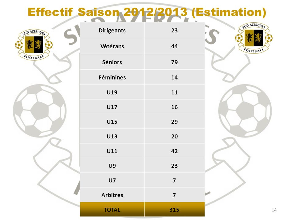 Effectif Saison 2012/2013 (Estimation)