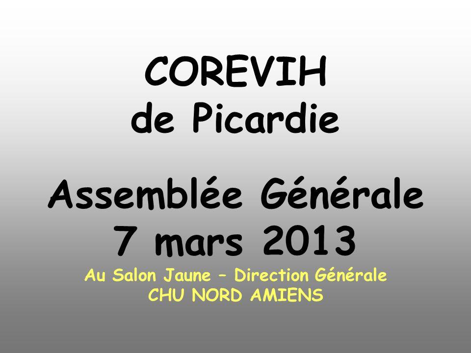 COREVIH de Picardie Assemblée Générale 7 mars 2013 Au Salon Jaune – Direction Générale CHU NORD AMIENS
