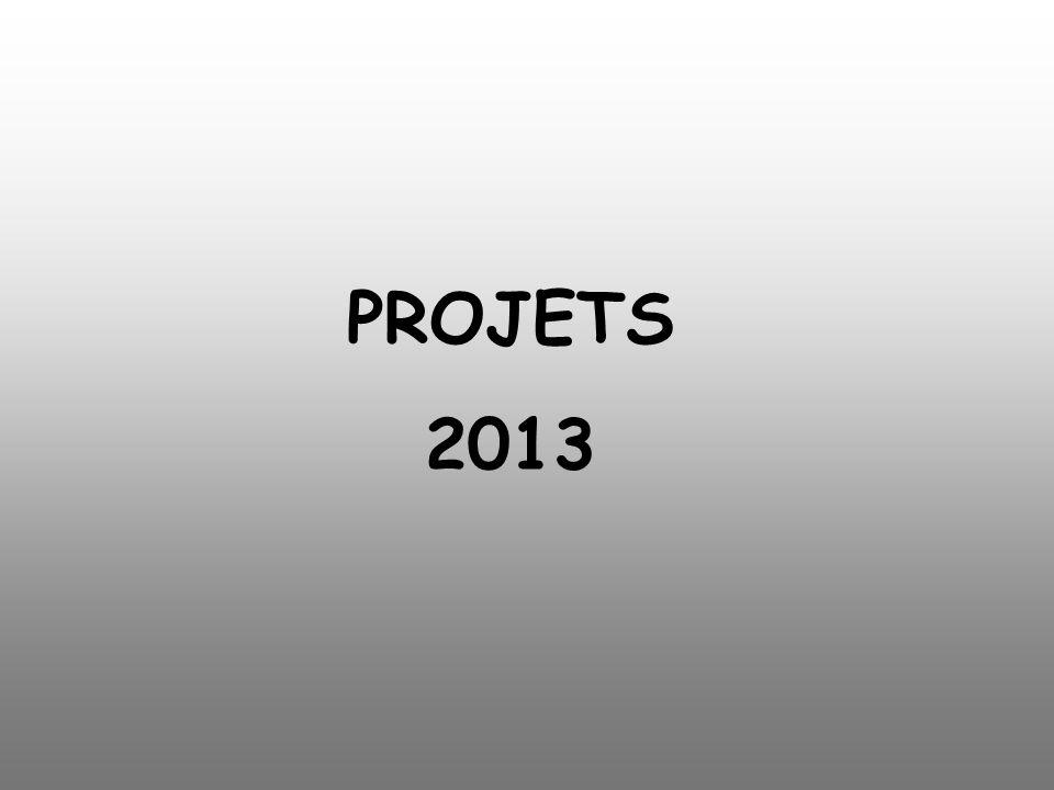 PROJETS 2013