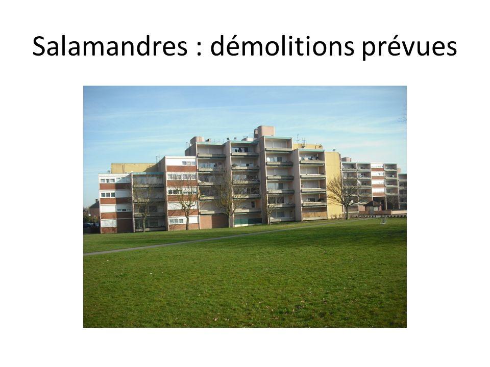 Salamandres : démolitions prévues