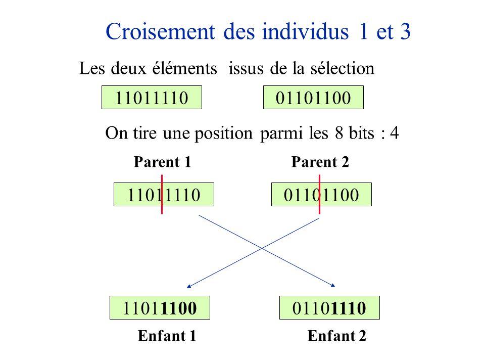 Croisement des individus 1 et 3