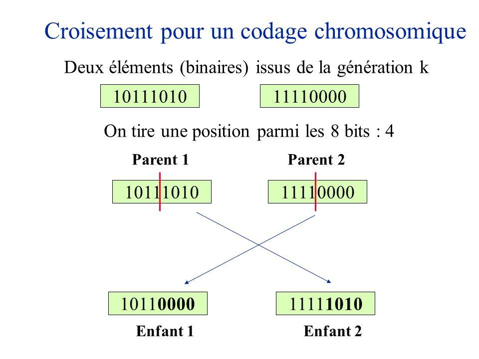 Croisement pour un codage chromosomique