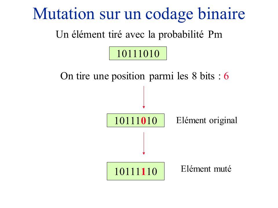 Mutation sur un codage binaire