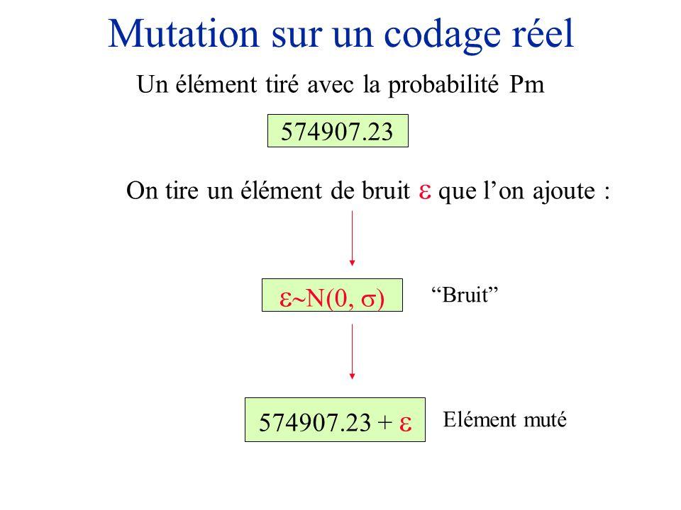 Mutation sur un codage réel