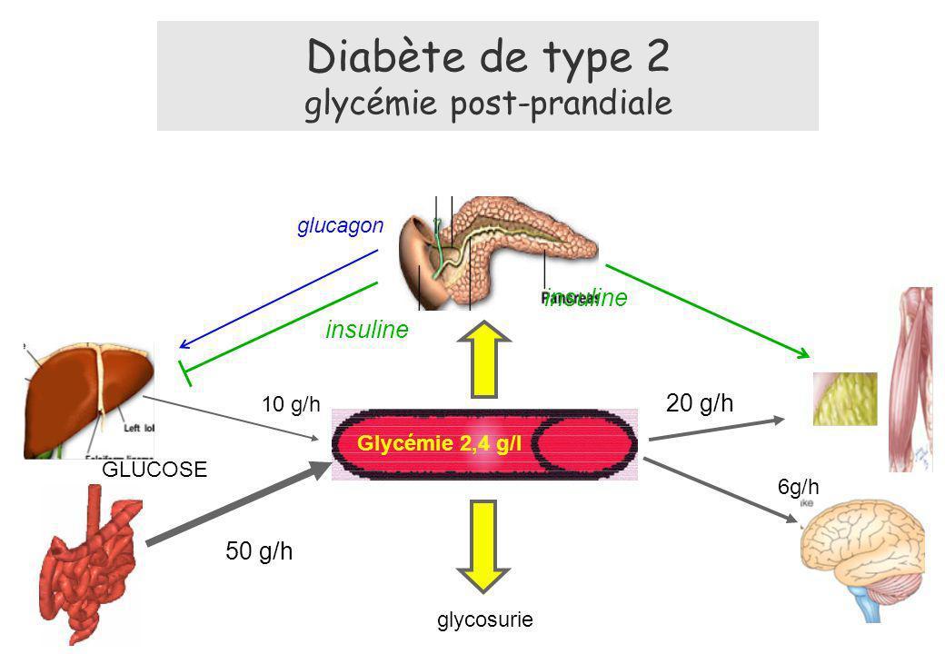 Diabète de type 2 glycémie post-prandiale