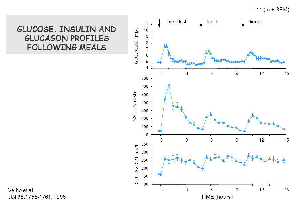 GLUCOSE, INSULIN AND GLUCAGON PROFILES FOLLOWING MEALS