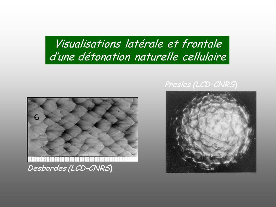 Visualisations latérale et frontale