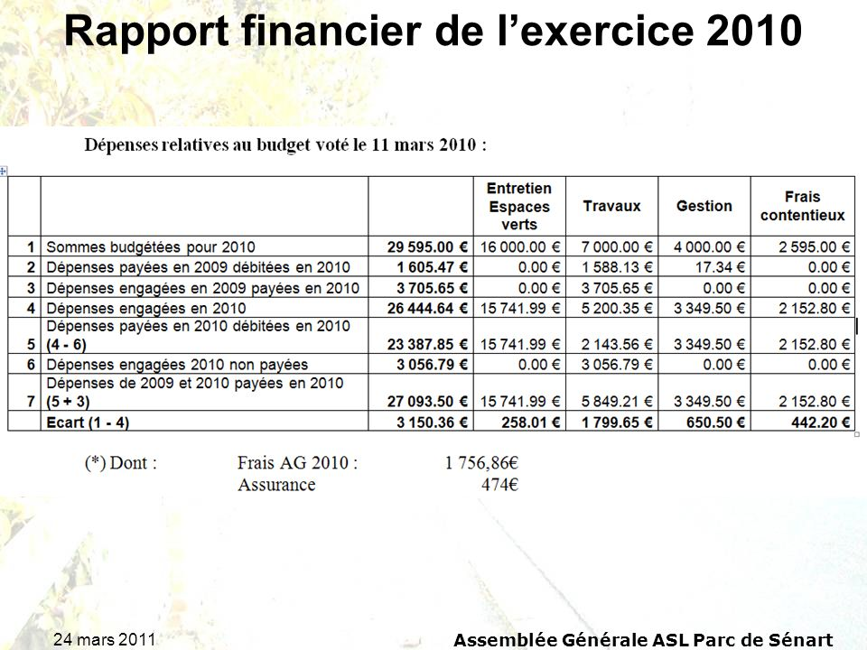 Rapport financier de l'exercice 2010