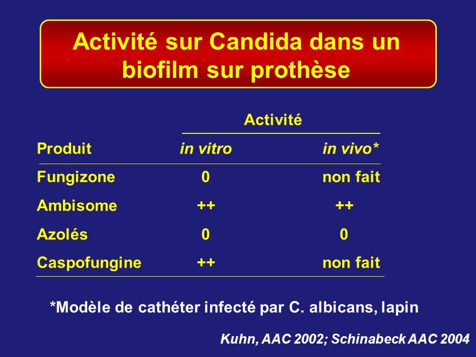 Activité sur Candida dans un biofilm sur prothèse