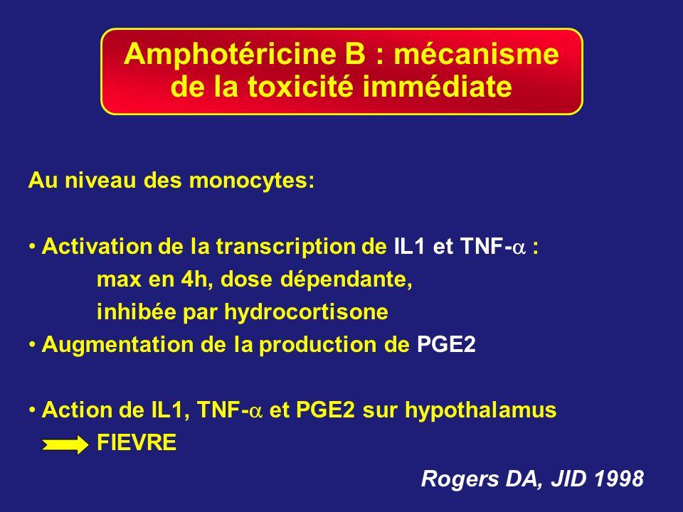 Amphotéricine B : mécanisme de la toxicité immédiate