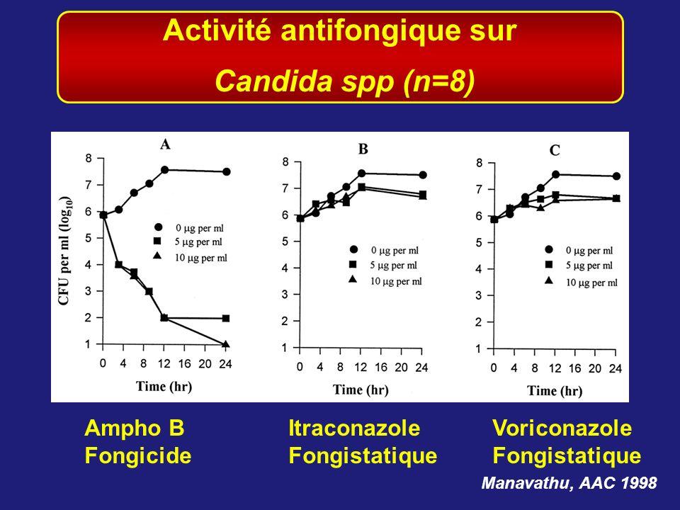 Activité antifongique sur
