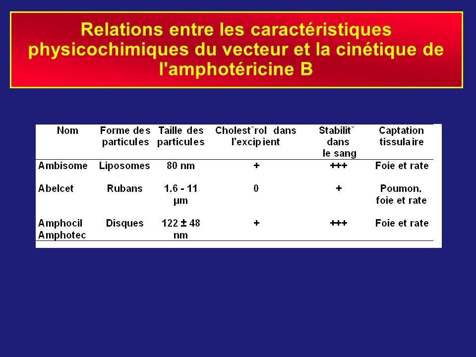 Relations entre les caractéristiques physicochimiques du vecteur et la cinétique de l amphotéricine B