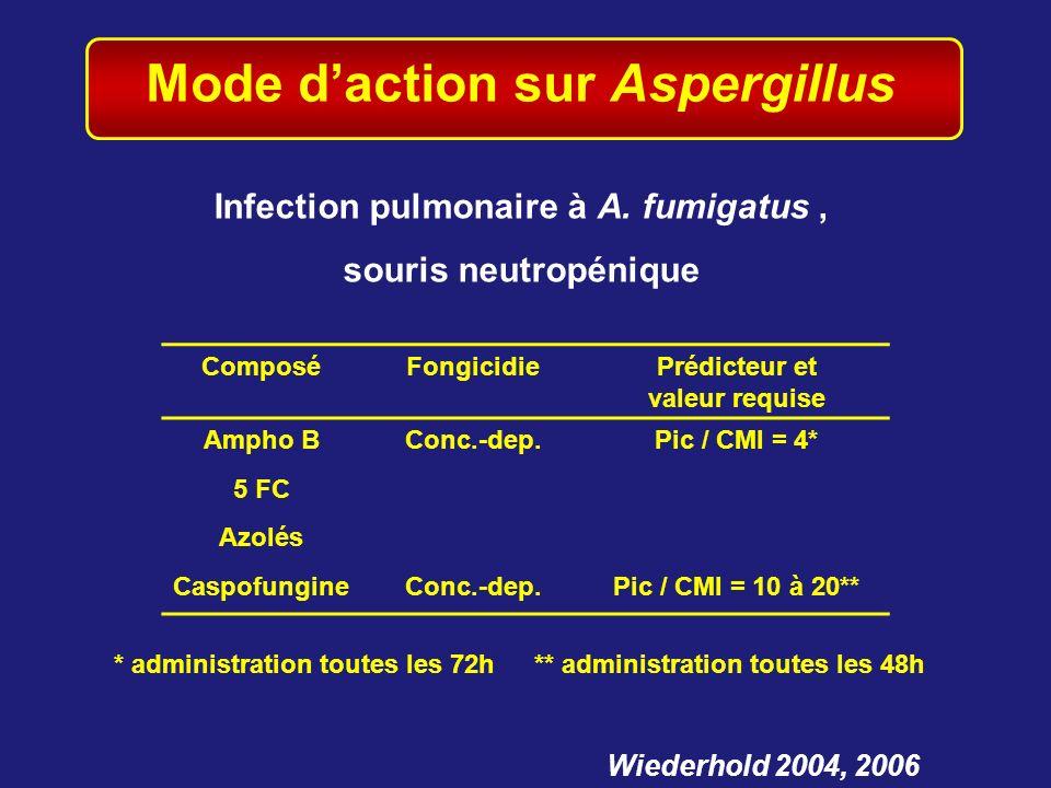 Mode d'action sur Aspergillus