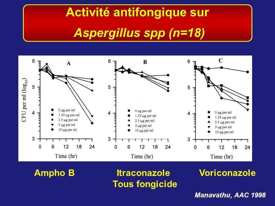 Activité antifongique sur Ampho B Itraconazole Voriconazole