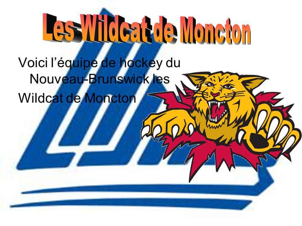 Les Wildcat de Moncton Voici l'équipe de hockey du Nouveau-Brunswick les.