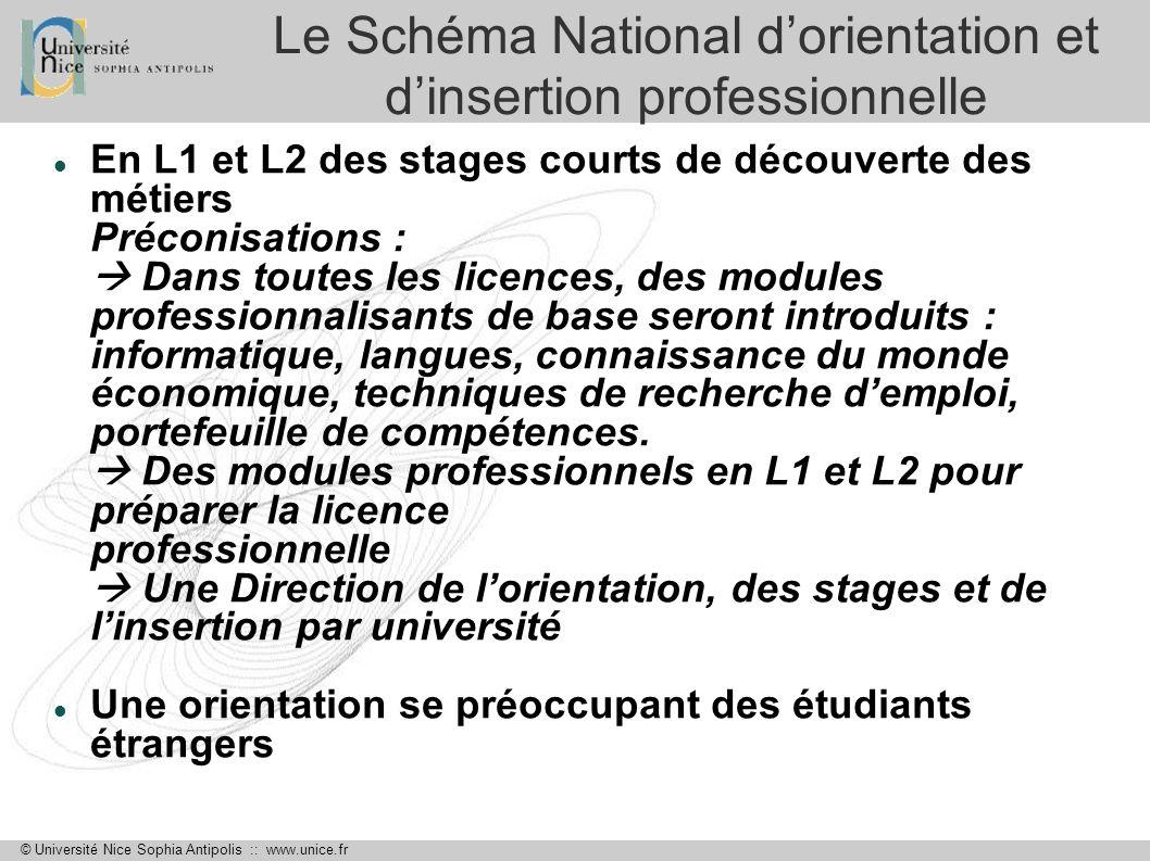 Le Schéma National d'orientation et d'insertion professionnelle