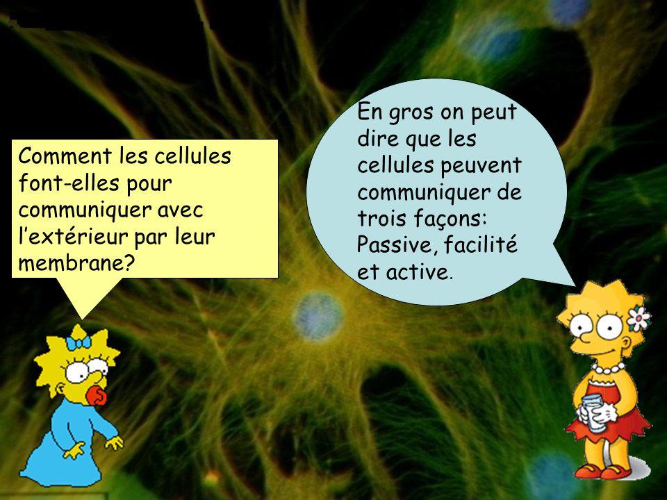 En gros on peut dire que les cellules peuvent communiquer de trois façons: Passive, facilité et active.