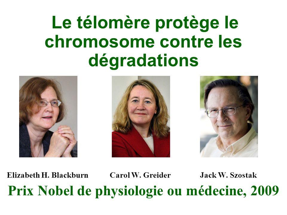 Prix Nobel de physiologie ou médecine, 2009