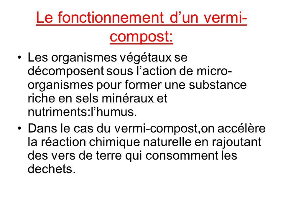 Le fonctionnement d'un vermi-compost: