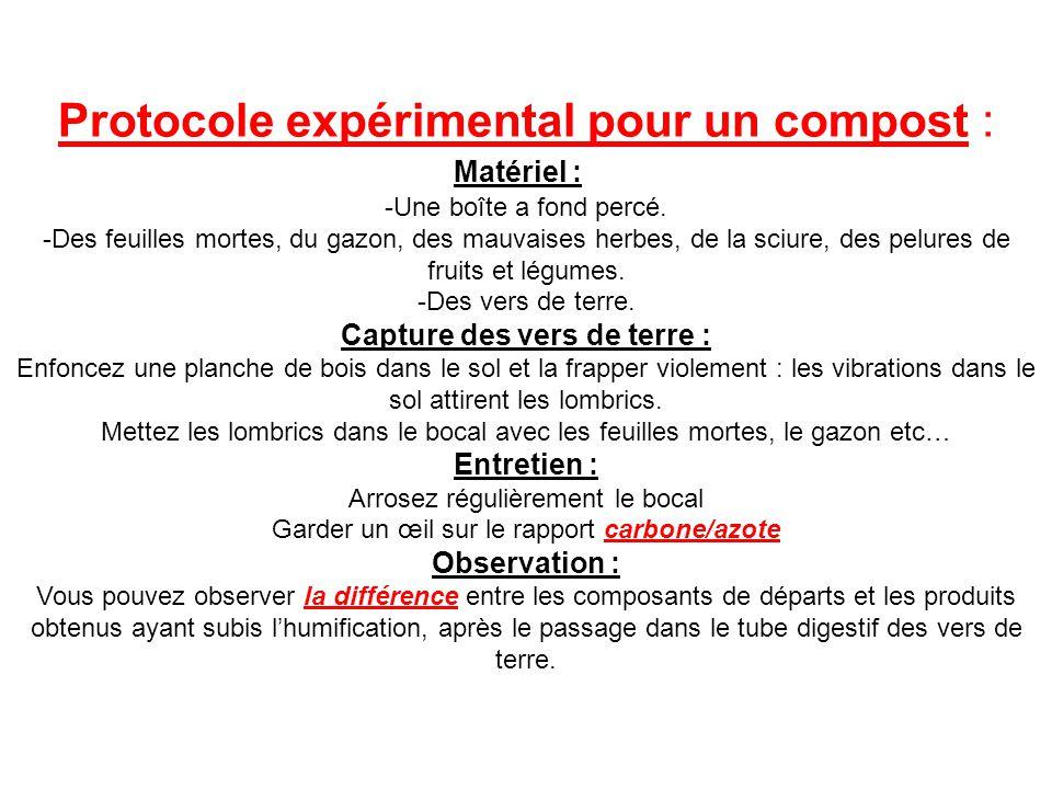Protocole expérimental pour un compost :