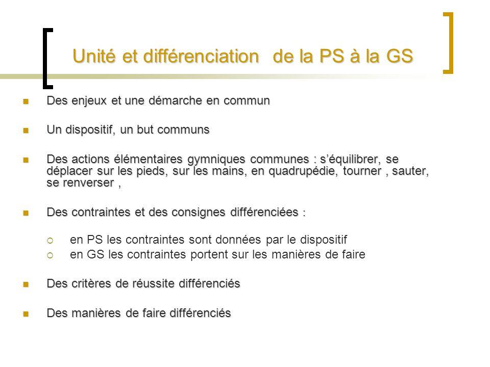 Unité et différenciation de la PS à la GS