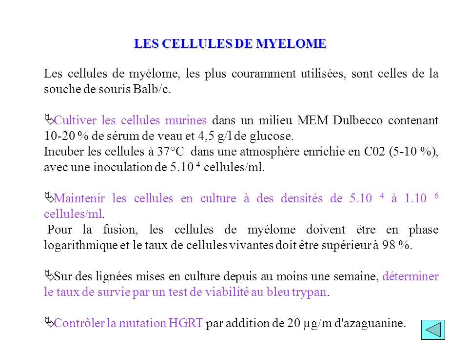 LES CELLULES DE MYELOME