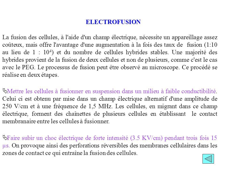ELECTROFUSION