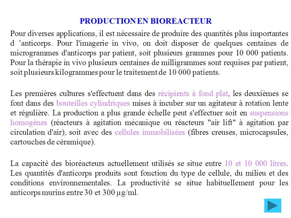 PRODUCTION EN BIOREACTEUR