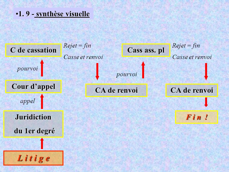 L i t i g e 1. 9 - synthèse visuelle C de cassation Cass ass. pl