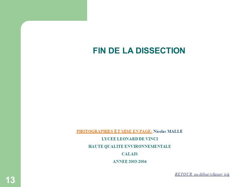 FIN DE LA DISSECTION PHOTOGRAPHIES ET MISE EN PAGE: Nicolas MALLE