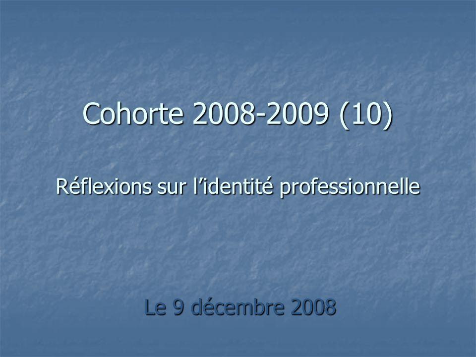 Cohorte 2008-2009 (10) Réflexions sur l'identité professionnelle