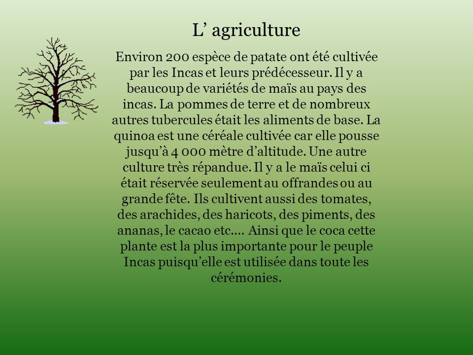 L' agriculture
