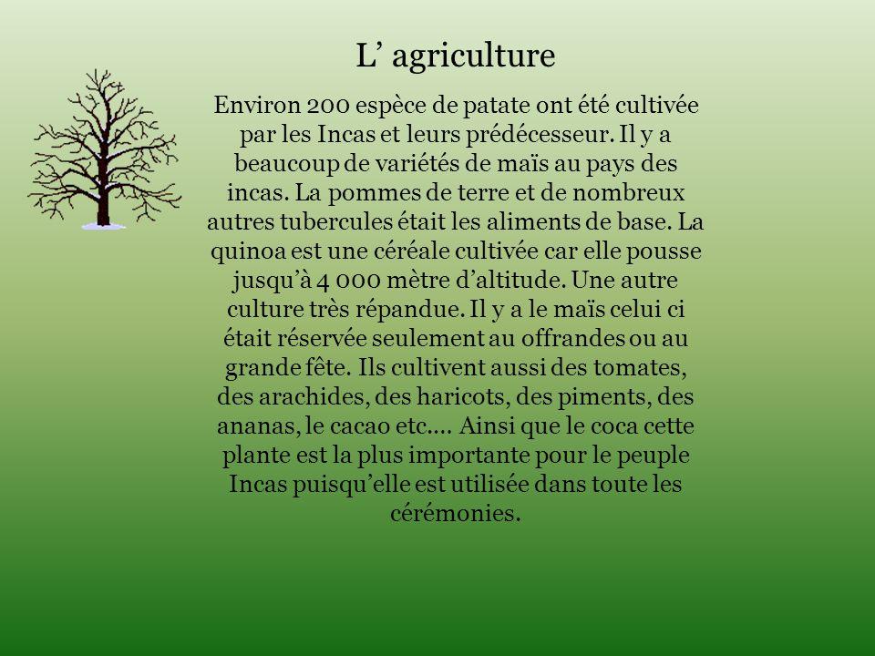 L' agriculture