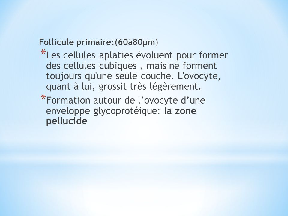 Follicule primaire:(60à80µm)