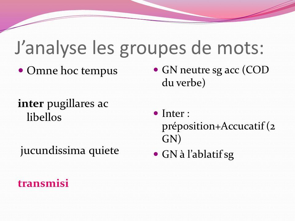 J'analyse les groupes de mots: